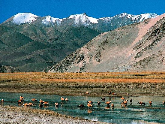 Zanskar Valley: best place on earth