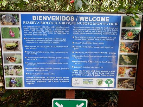 Monteverde Cloud Forest Reserve Görüntüsü