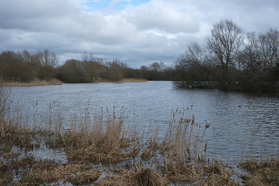 Linford Lakes Nature Reserve: Linford Lakes in March
