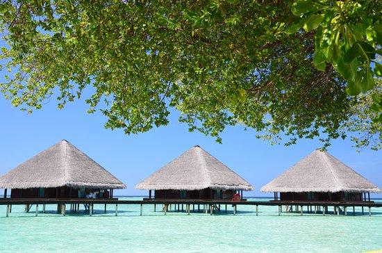 Rannalhi: Vodní bungalovy Adaaran Club Rannalhi
