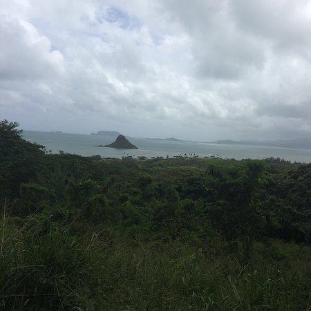 Kaneohe, HI: photo7.jpg