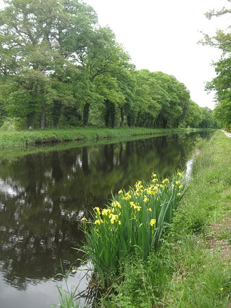 Langoelan, France: Nantes-Brest canal for gentle walks and easy bike rides along the towpath