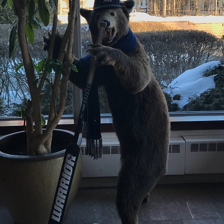 Orono, ME: Go Bears