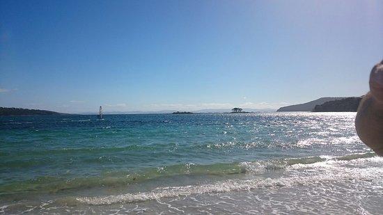 White Beach, Australia: DSC_0517_large.jpg