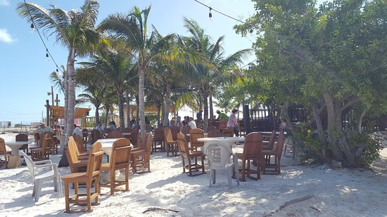 Five Cays Settlement, Providenciales: dining
