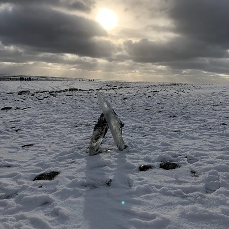 Always Iceland: photo8.jpg