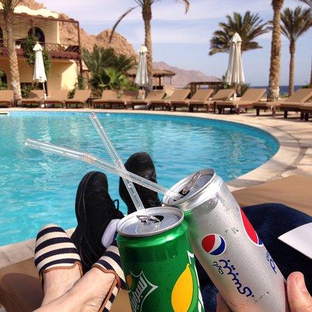 Dahab Paradise: photo6.jpg