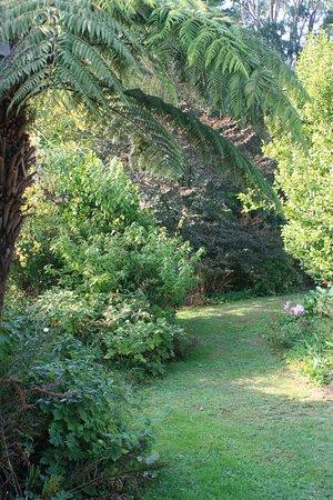Mirboo North, Australia: Front garden