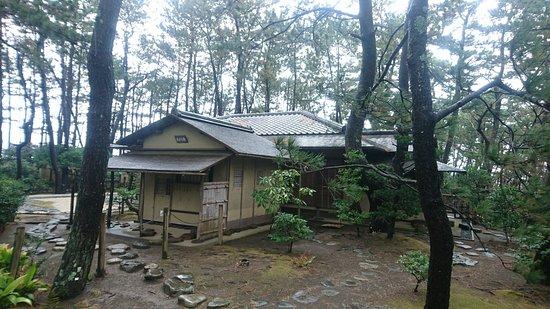 沼津御用邸記念公園, DSC_8154_large.jpg