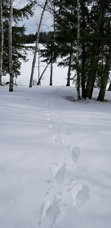 Wilton, ME: Our tracks down to the lake