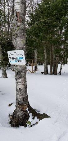 Wilton, ME: Frozen lake