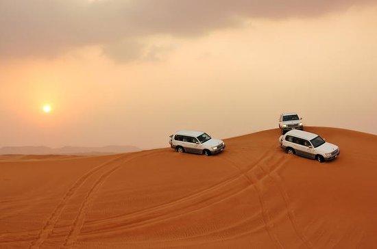 Visite privée: Dubai Dune Red Safari...