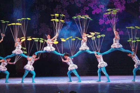 Private Tours: Beijing Acrobatic Show