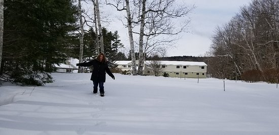 Wilton, ME: Winter wonderland