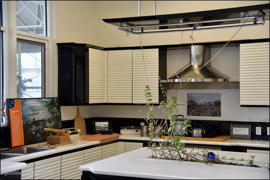Oracle, Arizona: Actual Kitchen Used by the Crew During the Experiment
