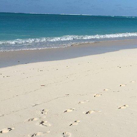 Parrot Cay: photo2.jpg