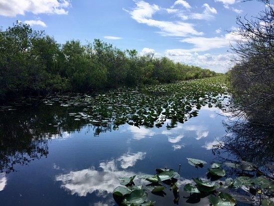Trip Advisor Everglades Tours From Miami