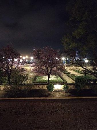 Studio Miramar: Las vistas del jardín del hotel.