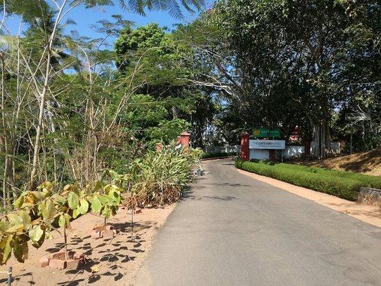 The Gateway Hotel Janardhanapuram Varkala : IMG_20180302_101033_large.jpg
