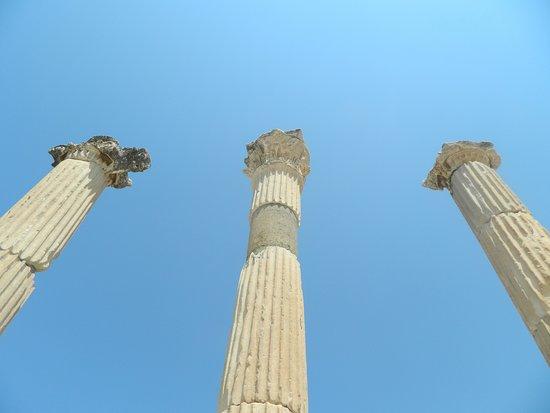 เมืองโบราณเอเฟซัส: Ruins