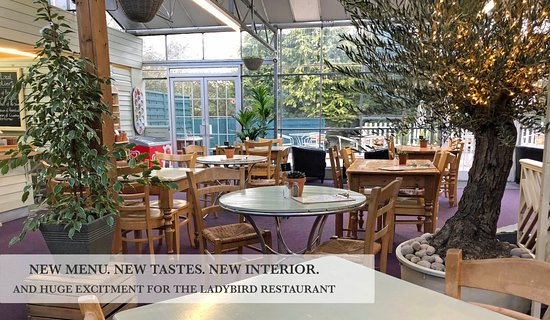 Laylocks Garden Centre The Ladybird Restaurant Worcester Menu