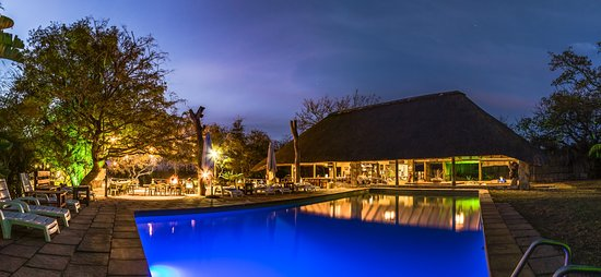 Timbavati Safari Lodge: Pool and Bar Area