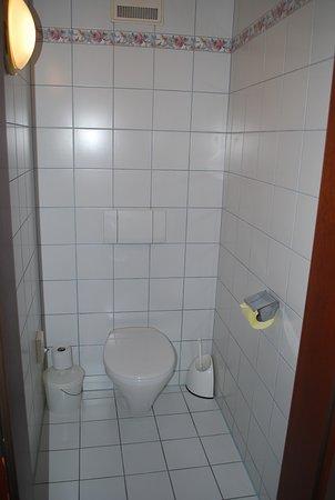 Altheim, النمسا: Dusche