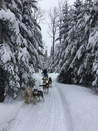Charlevoix, Canadá: photo0.jpg