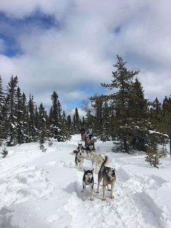 Charlevoix, Kanada: photo1.jpg