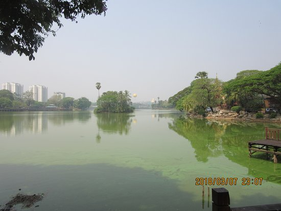 Front view of the lake picture of kandawgyi park for Lake front view