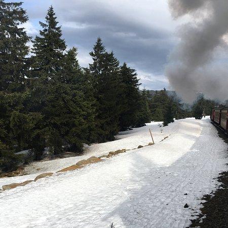 The Brocken Train Line : photo2.jpg