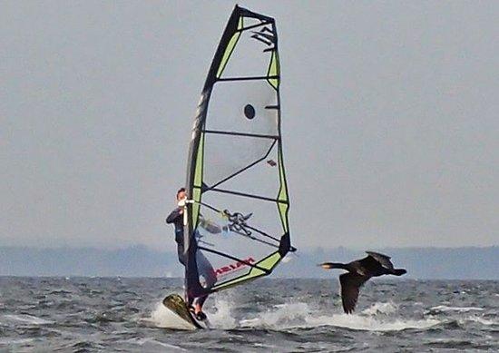 Szkola Windsurfingu MaxSurf
