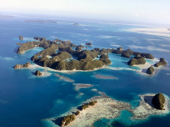 Palau Dive Adventures: Taken from our flight over Palau