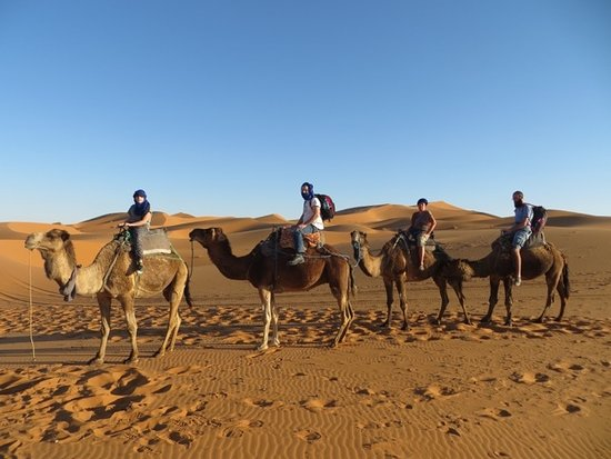 Marrakech Excursions Berberes