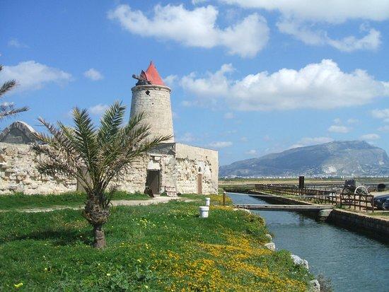 Province of Trapani, Italië: isola calcara