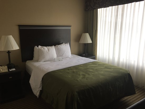 Indiana, PA: Queen Bed in Jacuzzi Room - Updated Beding