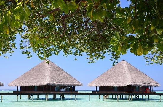 Rannalhi: Vodní vily Adaaran Club Rannalhi