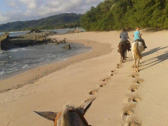 Star Mountain Horse Tours : riding on the beaches of Mal Pais