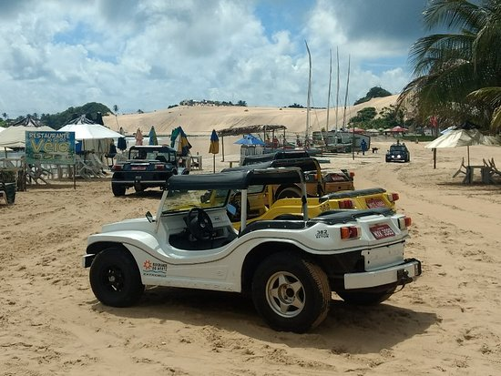 Genipabu Beach: IMG_20180302_092304466_large.jpg