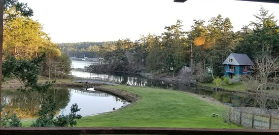 Captain Whidbey Inn : View from our Lagoon room