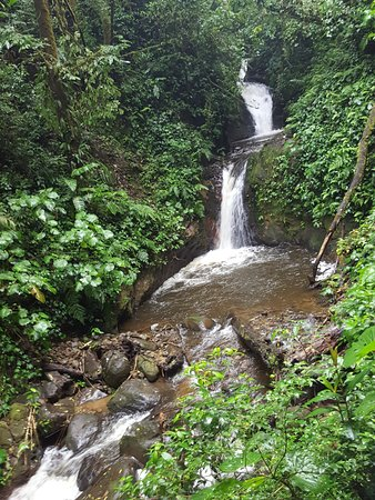 Monteverde Cloud Forest Reserve, Kosta Rika: one of the waterfalls along our path