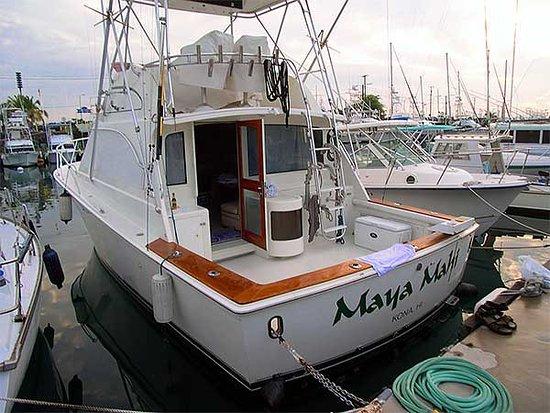 Maya Mahi