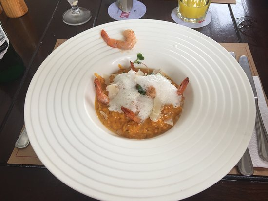 Mangos: Prawns Risotto. Nice presentation but overcooked