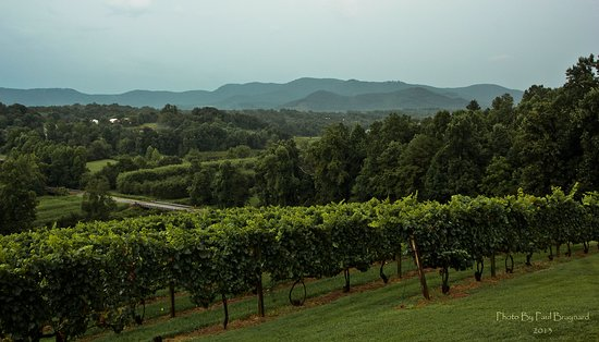 Silver Fork Winery: Amazing views of the South Mountains while relaxing on our patio with a glass of wine
