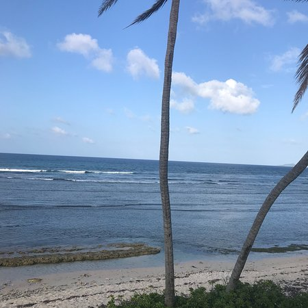 The Palms at Pelican Cove: photo1.jpg