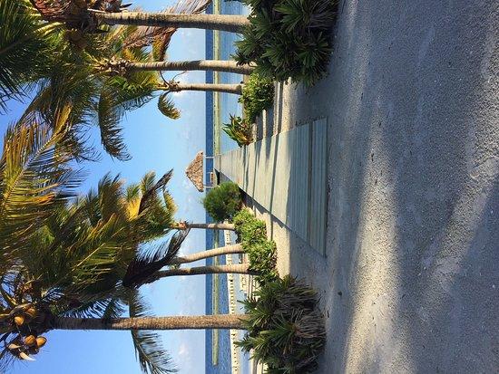 Turneffe Island Görüntüsü