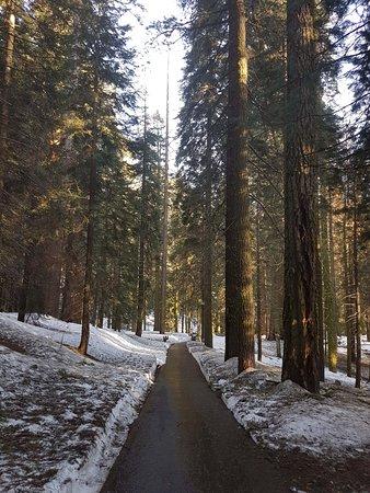 Three Rivers, CA: Congress Trail