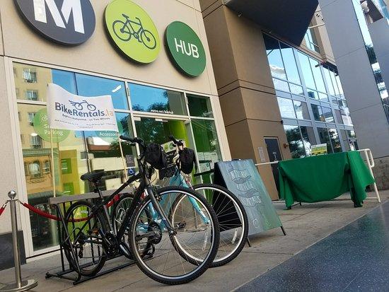 Bike Rentals LA