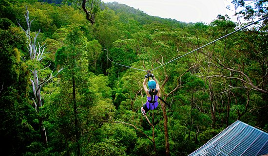 Gold Coast, Australia: Canyon Flyer Zipline Tour