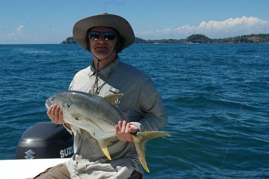 Golfo de Chiriqui National Park, Panamá: Crevalle Jack.